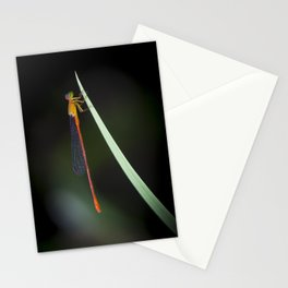 Damselfly Stationery Cards