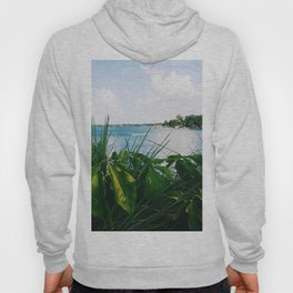 Beauty beyond the bushes Hoody