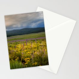 New Mexico Spring flowers Stationery Cards
