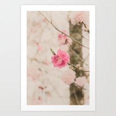 Spring Peach Blossom Art Print