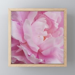 Floral Fun - Peony in pink 4 soft and billowy Framed Mini Art Print