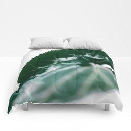 CYCLAMEN PERSICUM 02 Comforters