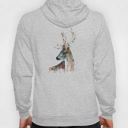 Deer - Fallow Deer Hoody