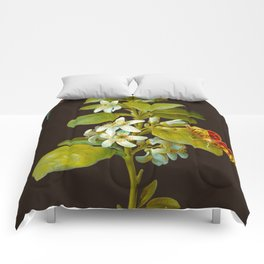 Elisabeth Christina Matthes - Botanical Floral Insect Illustration Comforters