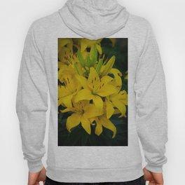 Yellow Lilies by Teresa Thompson Hoody