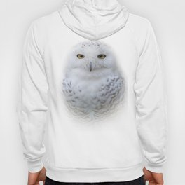 Dreamy Encounter with a Serene Snowy Owl Hoody