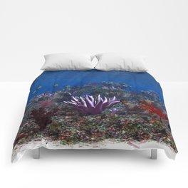 Marine Life Comforters