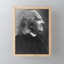 Franz Liszt Profile Picture Framed Mini Art Print