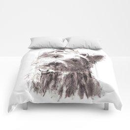 Bon Bon - the cat-like dog Comforters