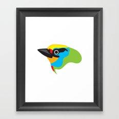 Black-browed Barbet Framed Art Print