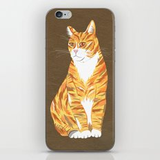Ginger cat iPhone & iPod Skin
