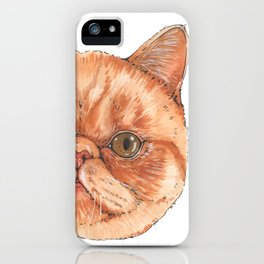 Betty aka The Snappy Cat- artist Ellie Hoult iPhone Case