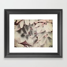 Touches of Pink Framed Art Print