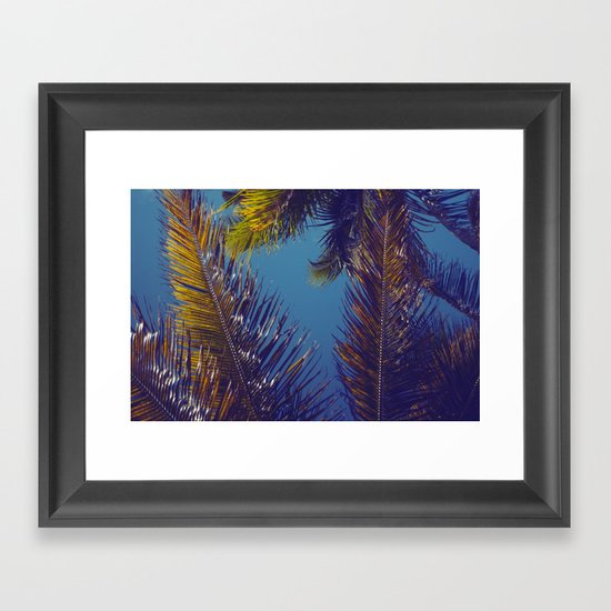 Palm Sky Framed Art Print