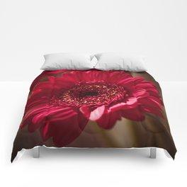 Red Gerbera II Comforters