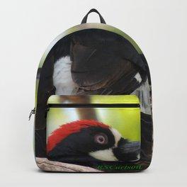 Acorn Woodpecker in Malibu Backpack