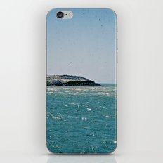 Sound to Shore iPhone & iPod Skin