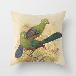 Black-billed Turaco, turacus sharpei Latin2 Throw Pillow