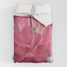 Water Petals Comforters