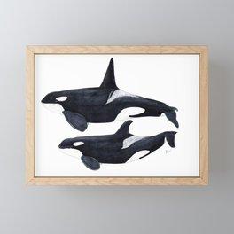 Orca male and female Framed Mini Art Print