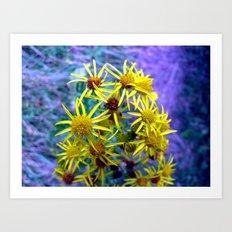 flower II. Art Print