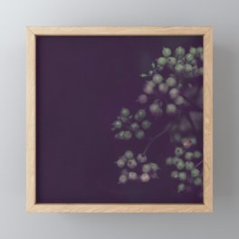 Sage Green Seeds on Deep Plum Framed Mini Art Print