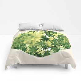 Spring Green Japanese Maple Round Photo Comforters