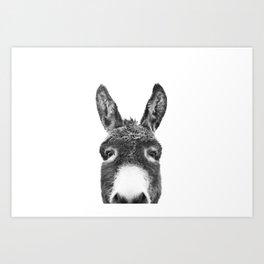 Hey Donkey BW Art Print