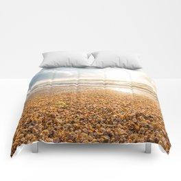 Sunset Cockleshell Comforters