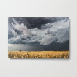 Cotton Candy - Storm Clouds Over Wheat Field in Kansas Metal Print