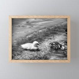 Follow Me - Black & White Framed Mini Art Print