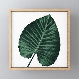 Love Leaves Evergreen - Him #3 #decor #art #society6 Framed Mini Art Print