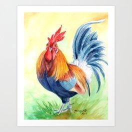 Kauai Island Rooster 4 Art Print