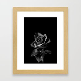 Black Roses Framed Art Print