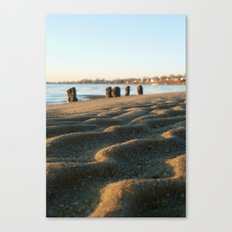 Waves of Sand Canvas Print