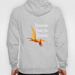 Flying Dinosaur Hoody
