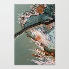Corrosion Colors II Canvas Print