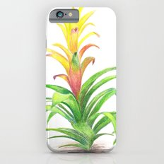 Bromeliad - Tropical plant Slim Case iPhone 6s