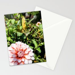 Peach Flower on the river Stationery Cards