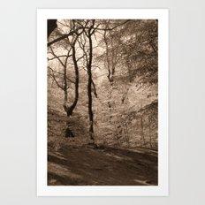 Forest Fantasy Art Print
