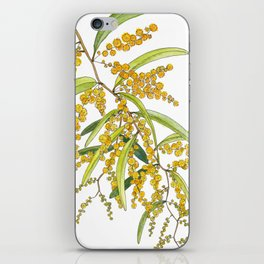 Australian Wattle Flower, Illustration iPhone Skin