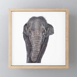 Asian Elephant Framed Mini Art Print