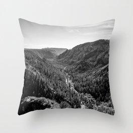 Black & White Arizona Throw Pillow