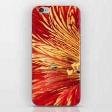 On the Edge of Goodbye iPhone & iPod Skin