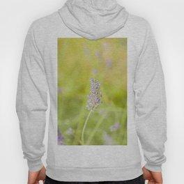 Lavender flower Hoody