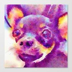 Lizzy (Chihuahua) Canvas Print