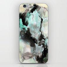 China iPhone & iPod Skin