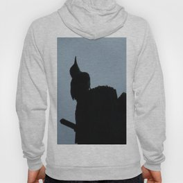 Woodpecker Checking the Weather Hoody