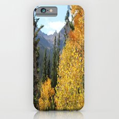 Autumn in the Rocky Mountains at Diamond Lake Trail, Eldora Colorado iPhone 6s Slim Case
