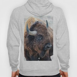 In The Presence Of Bison Hoody